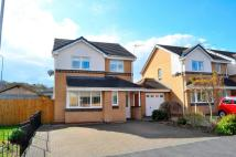 3 bed Detached home to rent in Maes Y Twr, Nercwys...