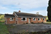 Detached Bungalow to rent in Bryneglwys, Nr Corwen...