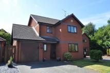 Y Dolydd Detached house to rent