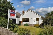 2 bed Detached Bungalow in The Links, Gwernaffield...