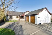Detached Bungalow in Garmon Court, Mill Lane...