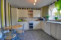 3 bedroom semi detached house to rent in Haulfryn, Ruthin, LL15