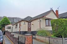 Detached Bungalow to rent in Arden Lea, Park Drive...