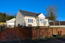 Detached Bungalow to rent in Pontybodkin Hill...