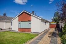 Detached Bungalow to rent in 20 Ffordd Penant...
