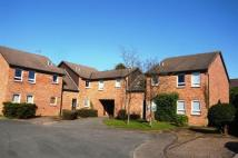1 bedroom Studio flat to rent in Framlingham Grove...