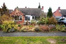 3 bed Bungalow to rent in Archer Road, Kenilworth