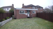 Semi-Detached Bungalow to rent in Grenville Close, Burnham...