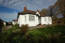Detached Bungalow for sale in BEECH AVENUE - FIVE ACRES