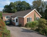 Detached Bungalow in WOODLAND RISE