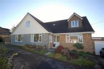 5 bed Bungalow in NEW ROAD, BREAM