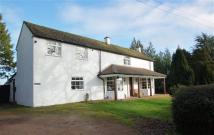Detached property for sale in HOLMLEIGH