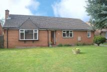 Detached Bungalow in Whitsbury Close...