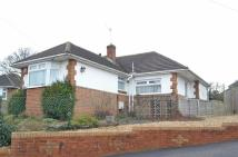 Detached Bungalow in Holly Green Rise...