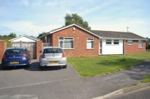 4 bedroom Detached Bungalow for sale in Ellesfield Drive. Call...