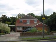 Detached house to rent in Julian Road...