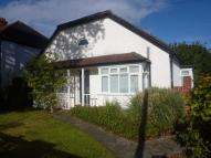 Detached Bungalow to rent in Avondale Road, Bromley...