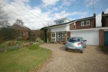 4 bedroom Link Detached House for sale in High Street, Walkern...