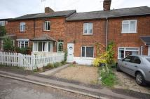 Westland Road Cottage to rent