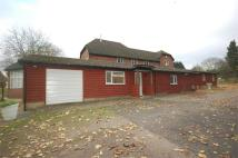 Barn Conversion to rent in Jacks Hill Farm...