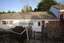 3 bed Terraced Bungalow to rent in Bideford