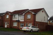 semi detached house to rent in Craigievar Avenue...