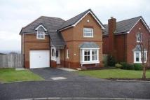 Detached house to rent in Tiree Grange, Hamilton