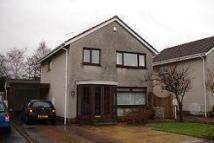 3 bed Detached house to rent in Shelly Drive, Bothwell