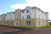 Apartment in Windmill Court, Hamilton