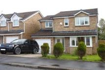 4 bed Detached house in Bellflower Grove...