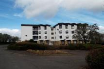1 bed Flat to rent in Cadzow House, Hamilton