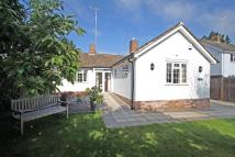 Detached Bungalow for sale in Church Road, Lingfield
