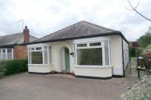 3 bed Detached Bungalow to rent in Woodhall Way, Beverley...