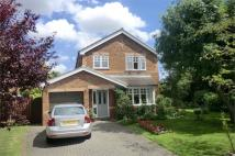 Detached property for sale in 15 The Poplars...