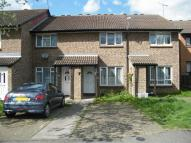 Pedley Road Terraced property to rent