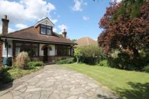 4 bedroom Detached property to rent in Scotts Avenue...