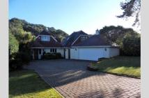 4 bedroom Detached property in Lilliput, BH14