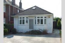 Bungalow to rent in Lower Parkstone, BH14