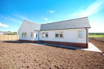 Detached Bungalow in Plot 3, Trabboch Road...
