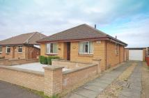 Detached Bungalow for sale in Church Drive, Mossblown...