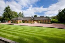 Detached property for sale in Rose House...