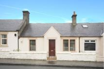 Terraced Bungalow in Broomknowe...