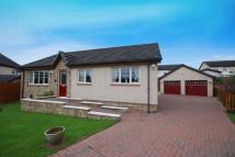 3 bed Detached Bungalow in Merkland Park, Dundonald...