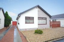 3 bedroom Detached Bungalow for sale in Connell Crescent...