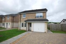 Detached home in Plot 46, Primpton Avenue...