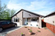 Detached Bungalow for sale in Skeldon Drive, Dalrymple...
