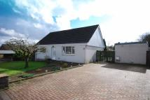 Detached Bungalow in Kildoon Drive, Maybole...