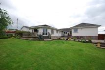 Detached Bungalow in 10 Gateside Road...
