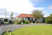 Detached Bungalow for sale in 2 High Langside Holdings...