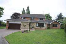 Detached house for sale in The Conifers,2...